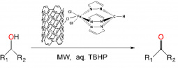 Oxidation of secondary alcohols to ketones with a C-scorpionate iron complex@CNT