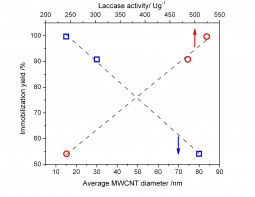 Relationship between the MWCNT average diameter or laccase activity and the immobilization yield