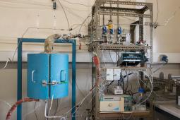 Sorption enhanced pilot scale reactor