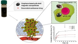 Graphene-based magnetic nanoparticles developed as pH-dependent drug delivery systems for cancer therapy