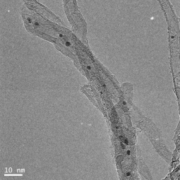 TEM image of Pd-Cu supported on carbon nanotubes