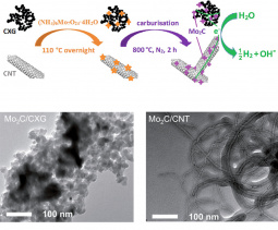 Scheme illustrating the synthesis of Mo2C/CXG and Mo2C/CNT and the respective TEM images