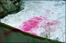 Tracer injection for pollutants dispersion modeling in Mondego River