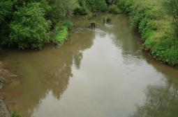 Minho/Miño river basin: Louro River.