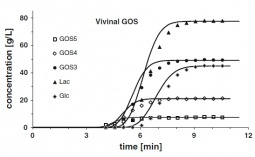 Experimental (points) and simulated (solid lines) breakthrough curves of individual saccharides for the adsorbent H+ form bed fed with the GOS syrup.