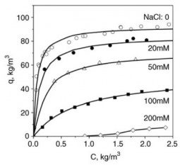 Effect of salt concentration in buffer on BSA adsorption isotherms on Streamline DEAE