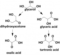 Glycerol oxidation reaction scheme