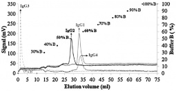 Elution profile of pure subclasses with segmented gradient elution on CIM r-protein A monolith column