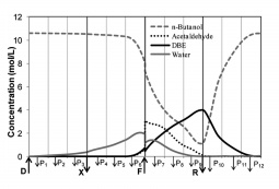 Cyclic steady state internal concentration profiles at the middle of the switching time for the synthesis of DBE in an integrated PermSMBR