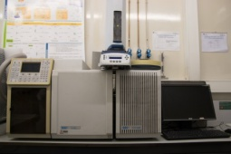 Gas chromatograph coupled to a mass spectrometer