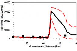 QUAL2kW model: prediction of microbiological contamination along Minho River